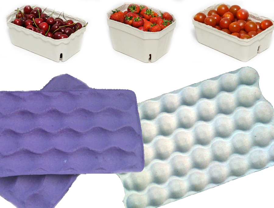 pulp fruit packaging mould