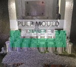 pulp mould machining