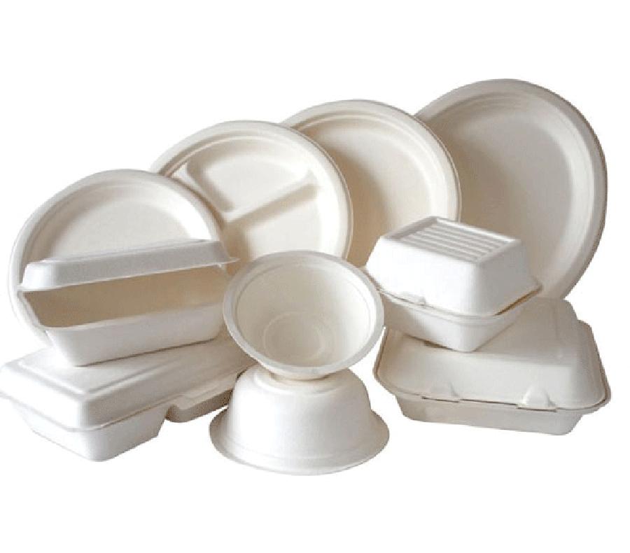 Sugarcane bagasse tableware mould